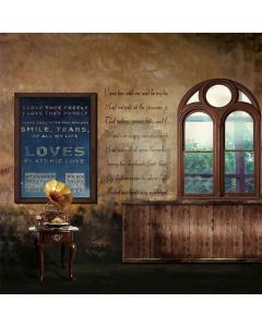 Arched Window Computer Printed Photography Backdrop S-307