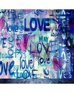 Letters Graffiti Wall Computer Printed Photography Backdrop S-470
