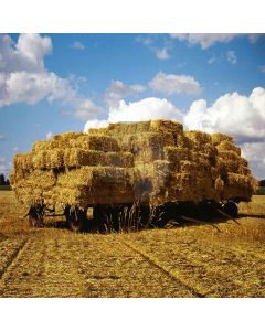 A Wide Farm  Computer Printed Photography Backdrop S-497