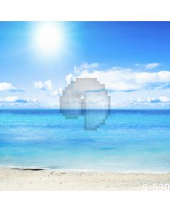 Quiet Beach Computer Printed Photography Backdrop S-530