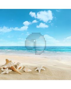 Cute Beach Computer Printed Photography Backdrop S-537