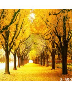 Autumn Golden Trees Computer Printed Photography Backdrop S-590