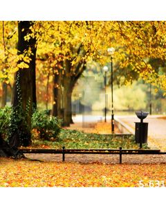 Autumn Street Computer Printed Photography Backdrop S-631