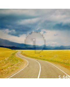 Winding Road Computer Printed Photography Backdrop S-640
