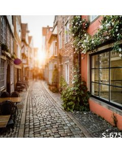 Cozy Alley Computer Printed Photography Backdrop S-675