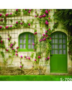 Lovely Door Computer Printed Photography Backdrop S-709