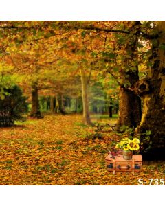 Autumn Picnic Computer Printed Photography Backdrop S-735