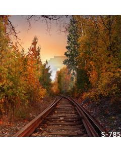 Autumn Railway Computer Printed Photography Backdrop S-785