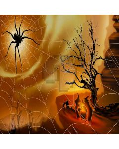 Scare Spider  Computer Printed Photography Backdrop XLX-022