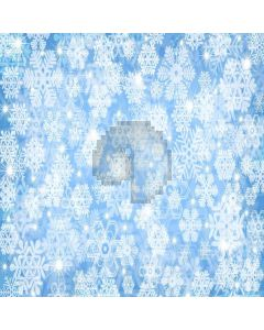 Pure Snowflakes  Computer Printed Photography Backdrop XLX-031