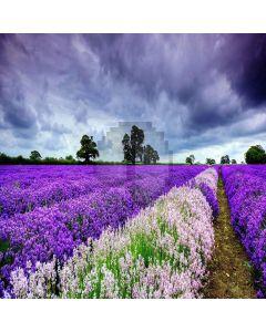 Romantic Lavender Computer Printed Photography Backdrop XLX-034
