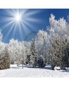 Warm Winter Sun Computer Printed Photography Backdrop XLX-051