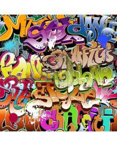 Beautiful Graffiti Computer Printed Photography Backdrop XLX-081