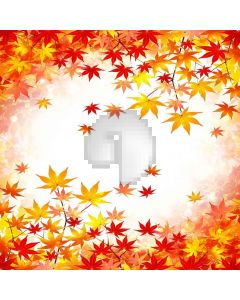 Falling Maple Leaf Computer Printed Photography Backdrop XLX-088