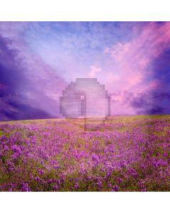 Romantic Flower Sea Computer Printed Photography Backdrop XLX-097