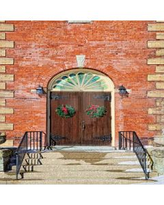 Beautiful Arched Door Computer Printed Photography Backdrop XLX-172
