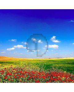 Fresh Sky Computer Printed Photography Backdrop XLX-248
