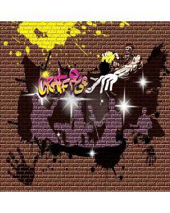 Wall Graffiti Art Computer Printed Photography Backdrop XLX-271