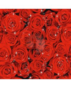 Romantic Roses Computer Printed Photography Backdrop XLX-282