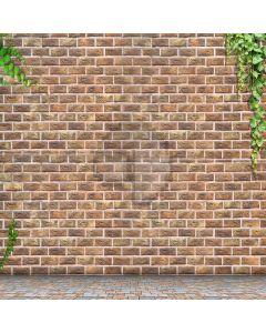 Simple Brick Wall  Computer Printed Photography Backdrop XLX-341