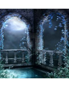 Night Scenery Computer Printed Photography Backdrop XLX-402
