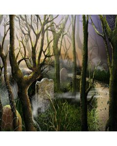 Fantacy Forest Digital Printed Photography Backdrop YHA-025
