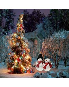 Merry Christmas Digital Printed Photography Backdrop YHA-028