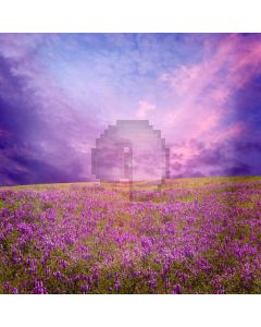 Romantic Lavender Digital Printed Photography Backdrop YHA-055