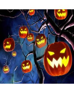 Mysterious Halloween Digital Printed Photography Backdrop YHA-068