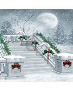 Christmas Stairs Digital Printed Photography Backdrop YHA-077