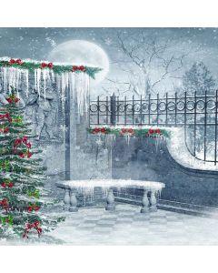 Nice Christmas Tree Digital Printed Photography Backdrop YHA-079