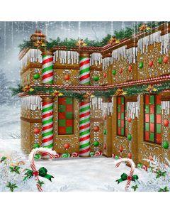 The Colourfulness Of Christmas Digital Printed Photography Backdrop YHA-080
