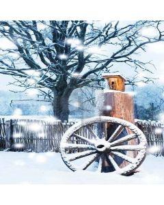 Charming Snow Landscape Digital Printed Photography Backdrop YHA-081