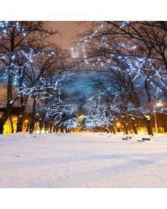 Quiet Snow Road Digital Printed Photography Backdrop YHA-094
