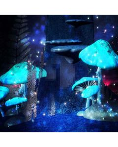 Shiny Mushroom Digital Printed Photography Backdrop YHA-136