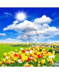 Sunshine And Flowers Digital Printed Photography Backdrop YHA-176