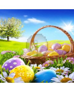 Colorful Eggs Digital Printed Photography Backdrop YHA-179