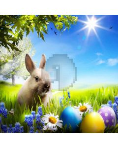 Bright Ourdoor Rabbit Digital Printed Photography Backdrop YHA-181