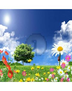 Sunny Landscape Digital Printed Photography Backdrop YHA-193