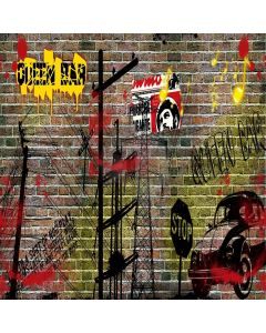 Graffiti Wall Digital Printed Photography Backdrop YHA-204