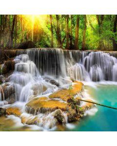Beautiful Scenery Digital Printed Photography Backdrop YHA-223