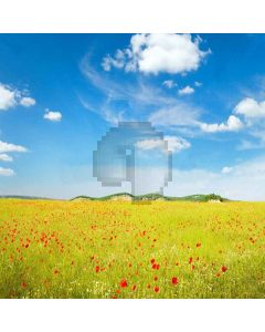 Wonderful World Digital Printed Photography Backdrop YHA-227