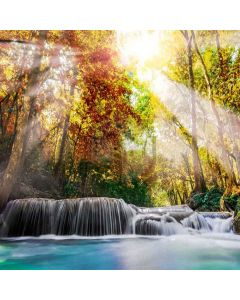 Shiny Sunshine Digital Printed Photography Backdrop YHA-228
