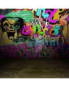 Amazing Graffiti Digital Printed Photography Backdrop YHA-238
