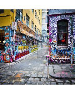 Street Graffiti Digital Printed Photography Backdrop YHA-240
