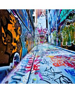 Graffiti Alley Digital Printed Photography Backdrop YHA-241
