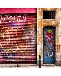 Street Art Digital Printed Photography Backdrop YHA-245
