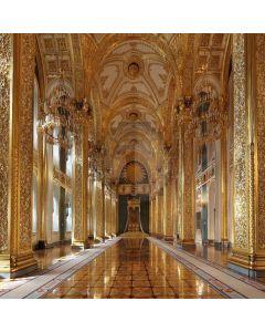 Ornate Hall Digital Printed Photography Backdrop YHA-270