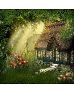 Mysterious Cabin Digital Printed Photography Backdrop YHA-300