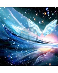 Beautiful Wings Digital Printed Photography Backdrop YHA-325